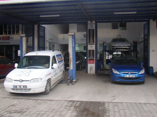 Peugeot ve Citroen Özel Servisi